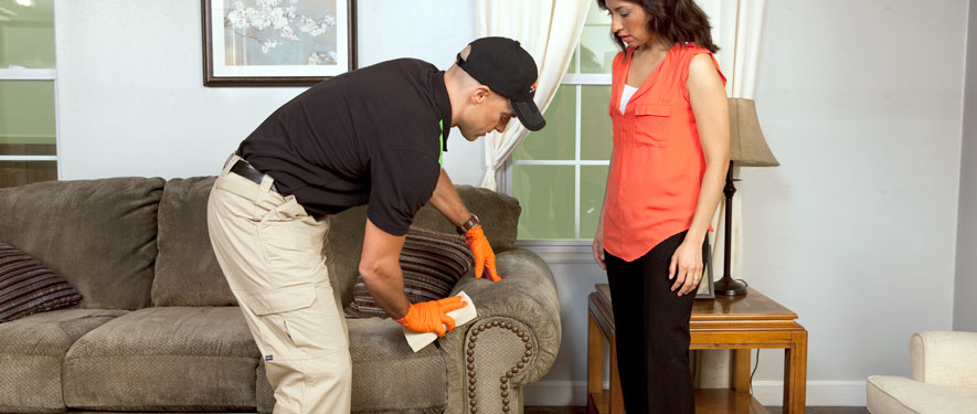 Dyersburg, TN carpet upholstery cleaning