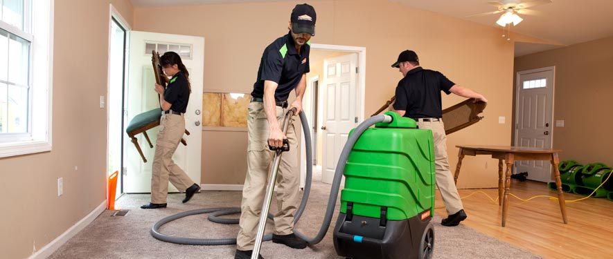 Dyersburg, TN cleaning services