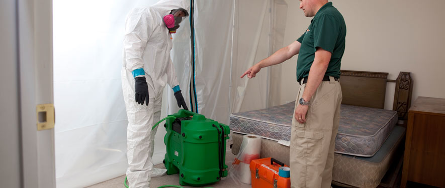 Dyersburg, TN mold removal process